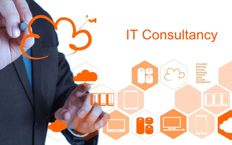 How Software Consultancy benefits you